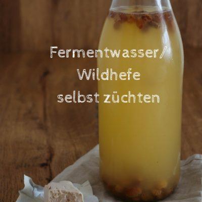 Hefewasser: Fermentwasser/ Wildhefe selber züchten