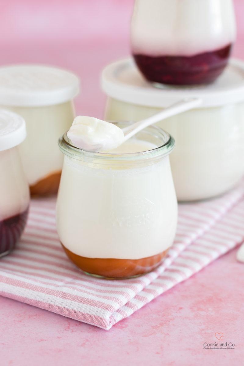 Selbstgemachter Joghurt, auch lactosefrei und fettarm.